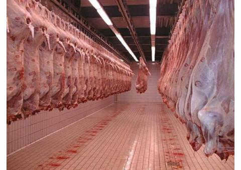Мясоперерабатывающее предприятие